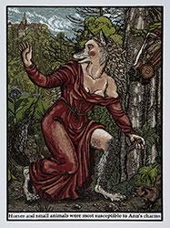 Ann of Meremoisa 1623 by Jazmina Cininas