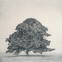 Memory Marker - Kathryn's Tree