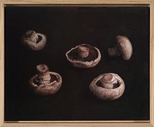 Lucy Roleff, Mushrooms