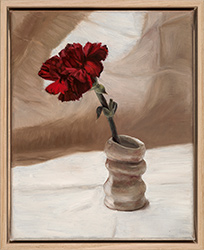 Lucy Roleff, Sunlight on Red Carnation