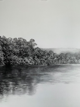 Revisiting the Pieman (Tasmania)