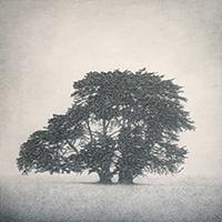 Memory Marker - Allansford