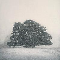 Memory Marker - Winter