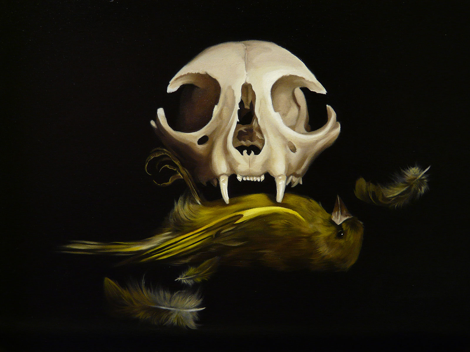 Cat Skull with Green Finch