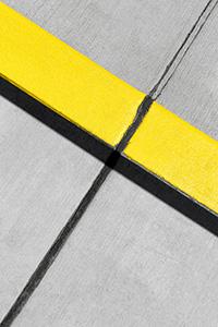 Jon Setter, Yellow, Black, Grey