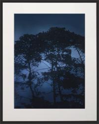 Nightfall Silhouette