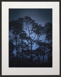 Nightfall Silhouette 3