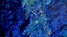 Breath in Blue Light