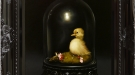 Natural Curiosities - Duckling