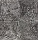 Lukarrara (Desert Fringe-Rush Seed Dreaming) #1191/20