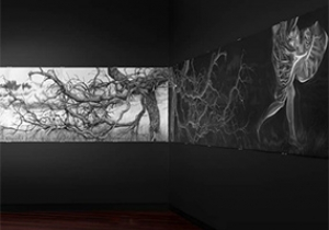 Kim Anderson at Manifest Research Gallery and Drawing Center